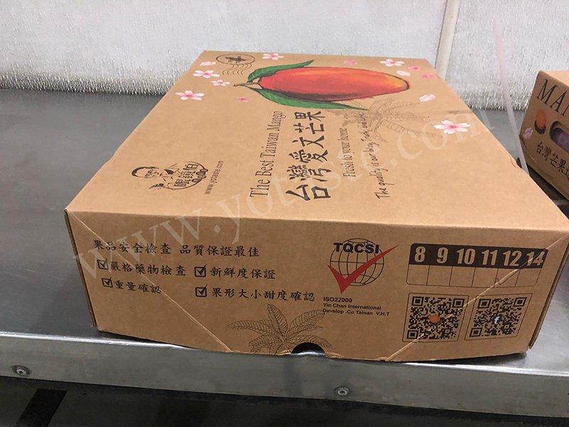 愛文芒果禮盒外包裝